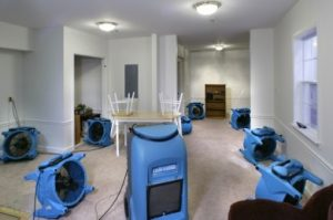 Water Damage Tucson