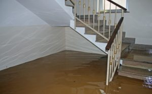 Green Valley Water Damage Restoration